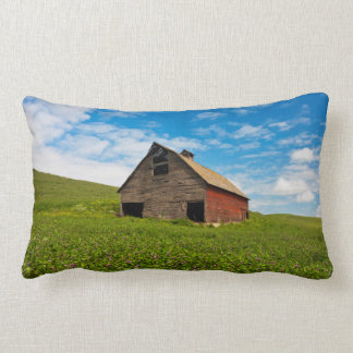 Old, red barn in field of chickpeas lumbar cushion