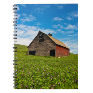 Old, red barn in field of chickpeas notebooks