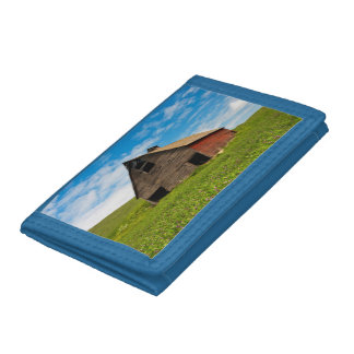 Old, red barn in field of chickpeas trifold wallet
