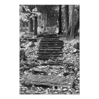 Old Stone Steps Photo