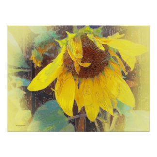 Old Sunflower Bowing Print