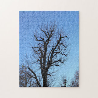 Old Tree And The Blue Sky Jigsaw Puzzle