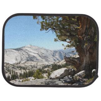 Old Tree at Yosemite National Park Car Mat