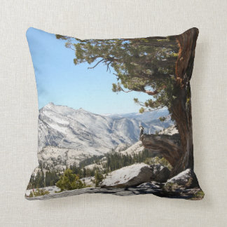 Old Tree at Yosemite National Park Cushion