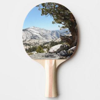 Old Tree at Yosemite National Park Ping Pong Paddle