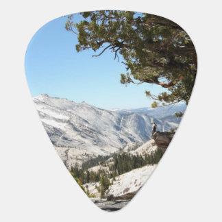 Old Tree at Yosemite National Park Plectrum