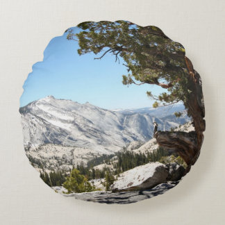 Old Tree at Yosemite National Park Round Cushion