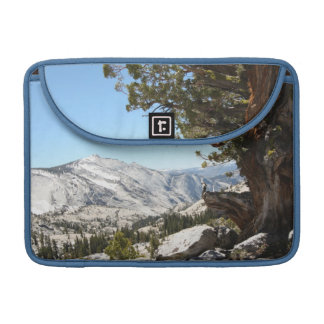 Old Tree at Yosemite National Park Sleeve For MacBook Pro