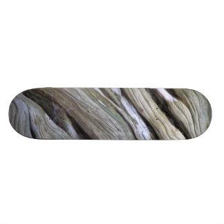 Old Tree Skateboard