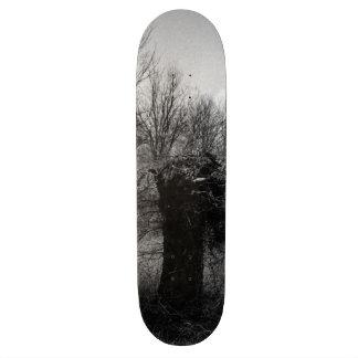Old Tree Skateboard Decks