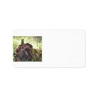Old Tree Stump Address Label