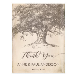 Old tree Thank You Card
