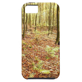 OLD TREES WITH LEAVES ON GROUND IN AUTUMN iPhone 5 CASE