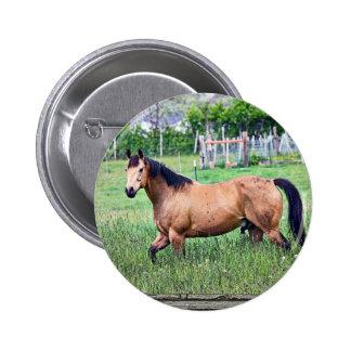 Old window horses 2 6 cm round badge