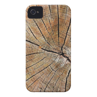 Old Wood Grain iPhone 4 Cases
