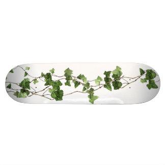 Old Wood Skateboard Deck