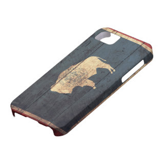 Old Wooden Wyoming Flag iPhone 5 Cover