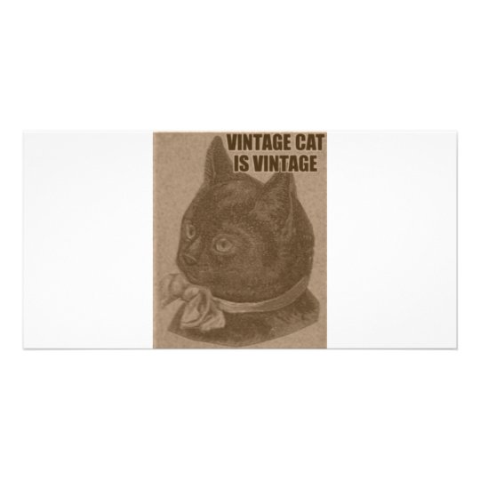 Olde LOLcat Personalized Photo Card