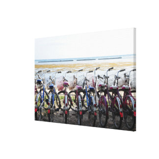 Oldies Bicycle Leaning Parked In A Row Canvas Print