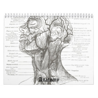 OldSchool Anatomy Calendars