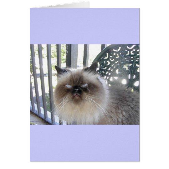 Ole' Blue Eyes Card