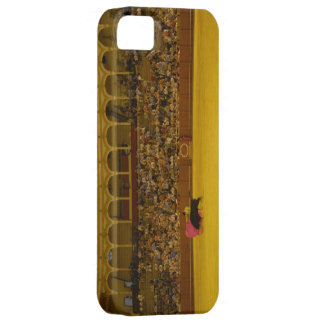 Ole! iPhone 5 Cases