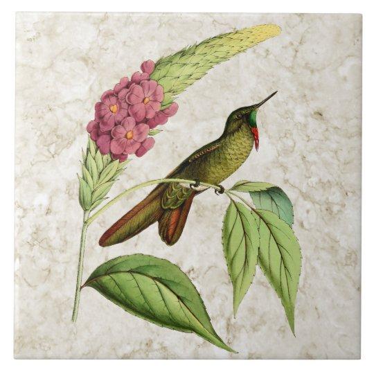 Olivaceous Thornbill Vintage Hummingbird Large Square Tile