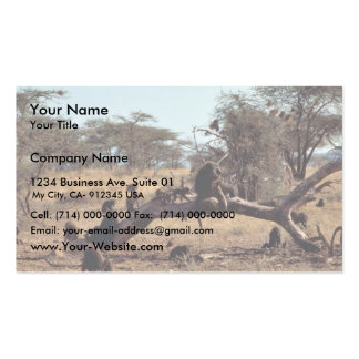 Olive Baboons Business Card