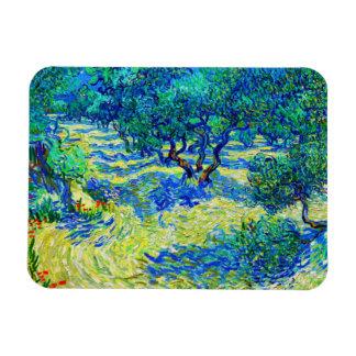 Olive Grove by Vincent Van Gogh Rectangular Photo Magnet