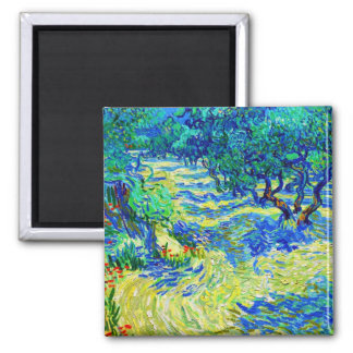 Olive Grove by Vincent Van Gogh Square Magnet