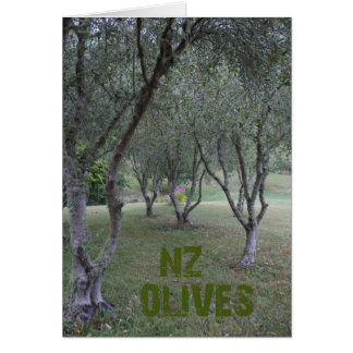 Olive grove in summer card