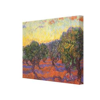 Olive Grove Orange Sky by Vincent van Gogh Canvas Print