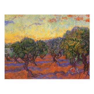 Olive Grove, Orange Sky by Vincent van Gogh Postcard