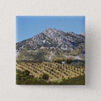 Olive Groves 15 Cm Square Badge