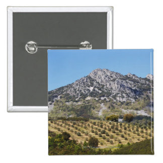 Olive Groves 15 Cm Square Badge