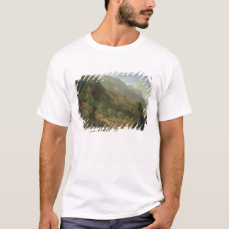 Olive Groves at Varenna, Lake Como, Italy, 1861 (o T-Shirt