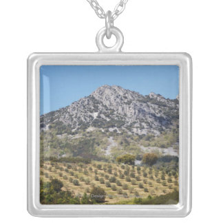Olive Groves Silver Plated Necklace