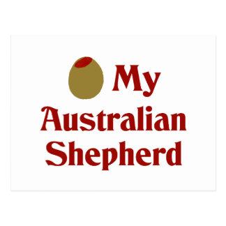 Olive (I Love) My Australian Shepherd Postcard