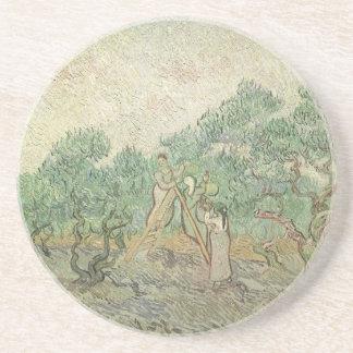 Olive Picking by Vincent van Gogh, Vintage Art Coaster