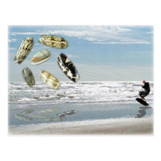 Olive Shells pulling boogie boarder Postcard