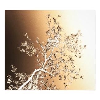 olive tree photo art