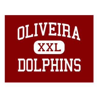 Oliveira - Dolphins - Middle - Brownsville Texas Postcard