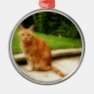 Oliver Cat Silver-Colored Round Decoration