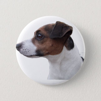 Ollie the Jack Russell 6 Cm Round Badge