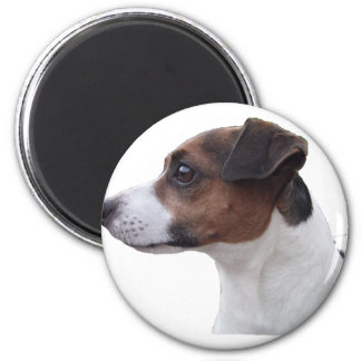 Ollie the Jack Russell 6 Cm Round Magnet