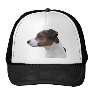 Ollie the Jack Russell Cap
