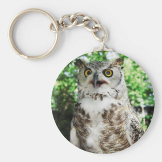 """ OLLY "" THE OWL KEYRING"