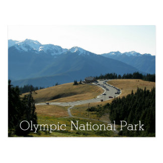 Olympic National Park Travel Photo Postcards