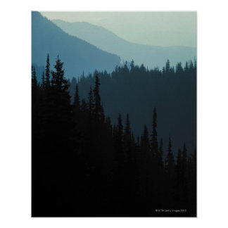 Olympic National Park , Washington Poster