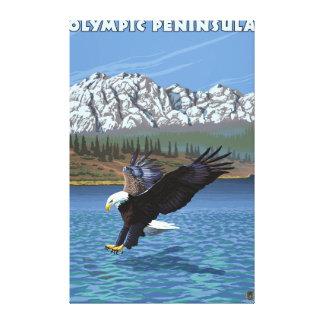 Olympic Peninsula, WashingtonFishing Eagle Canvas Print